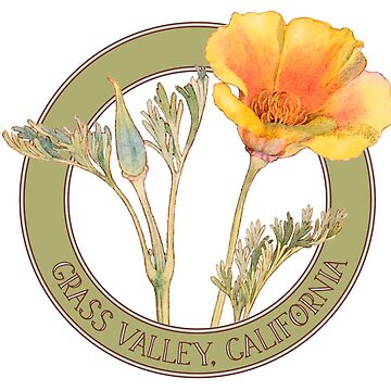 Grass Valley Poppy by codyjoseph