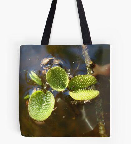 Beautiful Illegal Alien Tote Bag