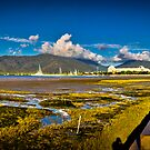 Cairns Forshore by Ian Fraser