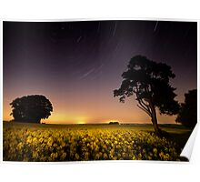 rapeseed field by moonlight Poster