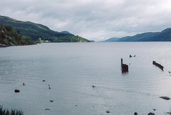 Loch Ness from shore Fort Augustus Scotland 19840909 0002  by Fred Mitchell