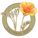 California Poppy by codyjoseph