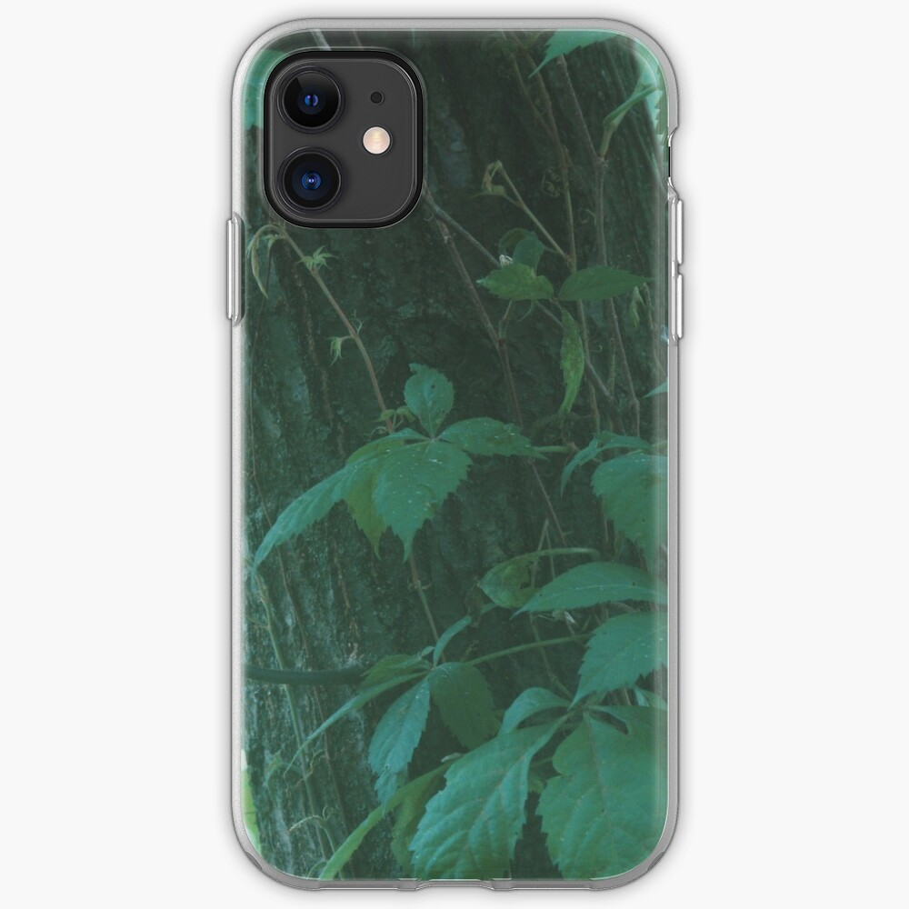 Foggy Forest iPhone Case & Cover