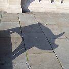 Pig Shadow by Robert Steadman
