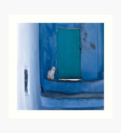 Waiting White Cat Art Print