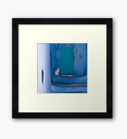 Waiting White Cat Framed Print
