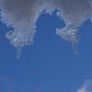 icycles, winter, New Zealand by wilderpisces