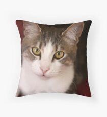 Puddy Tat Throw Pillow