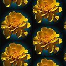 Sunshine Yellow Flower by Martha Johnson