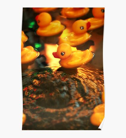 Beautiful Yellow Rubber Duck In Water Poster