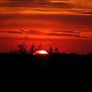 Summer sunset by loiteke