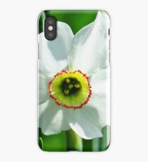 Petite Daffodil  iPhone Case