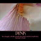 Pink by pbischop