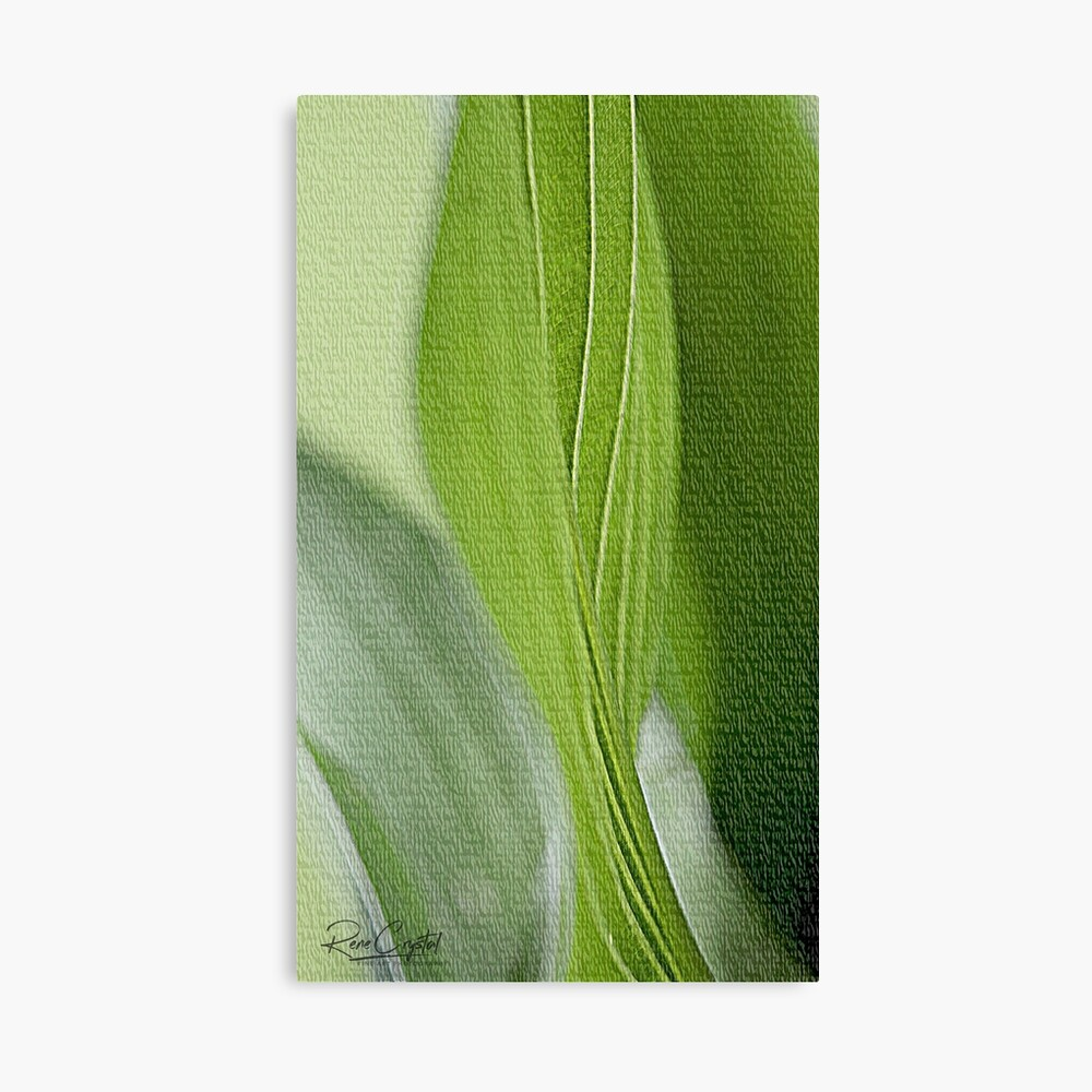 Here Comes Hosta! Canvas Print
