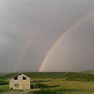 Rainbow by Magda Vacariu