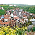Staithes again, in cabbage! lol. by dougie1