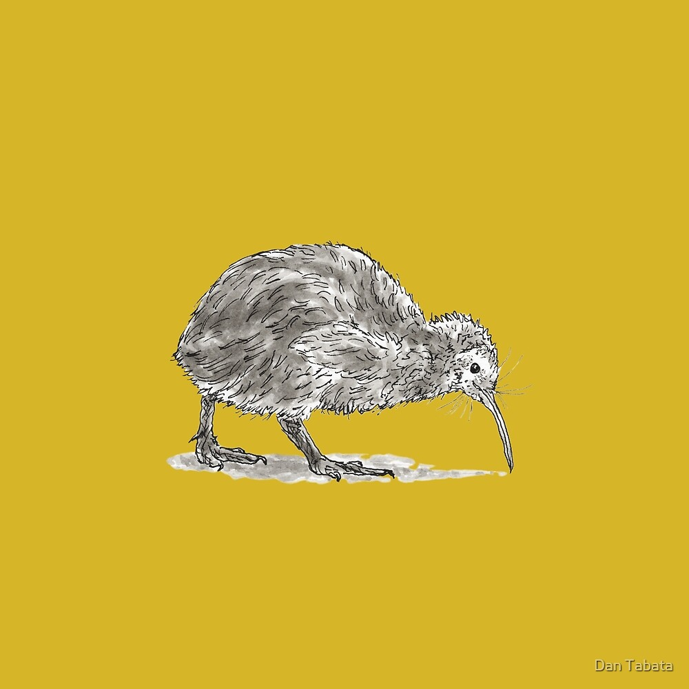 Kiwi Bird by Dan Tabata