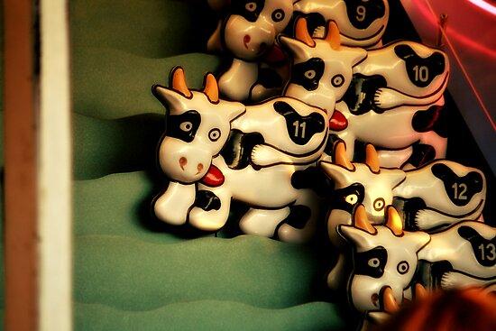 Race Cow by terrebo