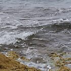 Inshore Swell at Point Peron WA by lezvee
