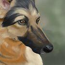 German Shepherd by Charmaine Bailey