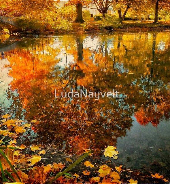 Reflection of the fall by LudaNayvelt