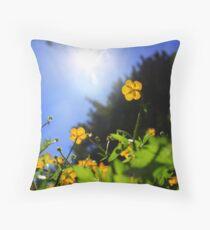 Sun-ups Throw Pillow