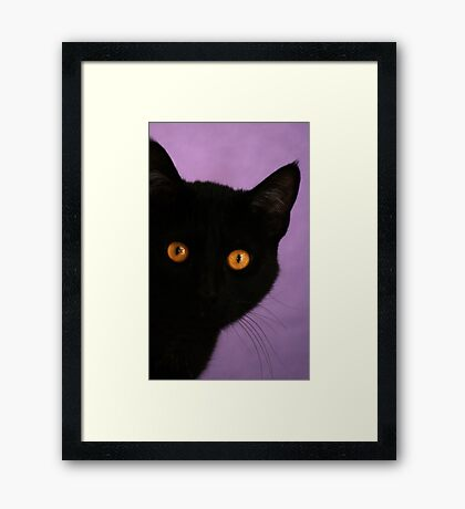 Bright Eye  Framed Print