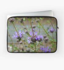 Sage/Salvia Flowers - San Fernando Valley, California Laptop Sleeve