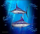 Stripes - Striped Marlin by David Pearce