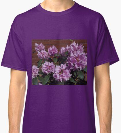 Rhododendron genießt den Sonnenschein Classic T-Shirt