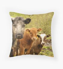 Group of Cows in Scotland Throw Pillow