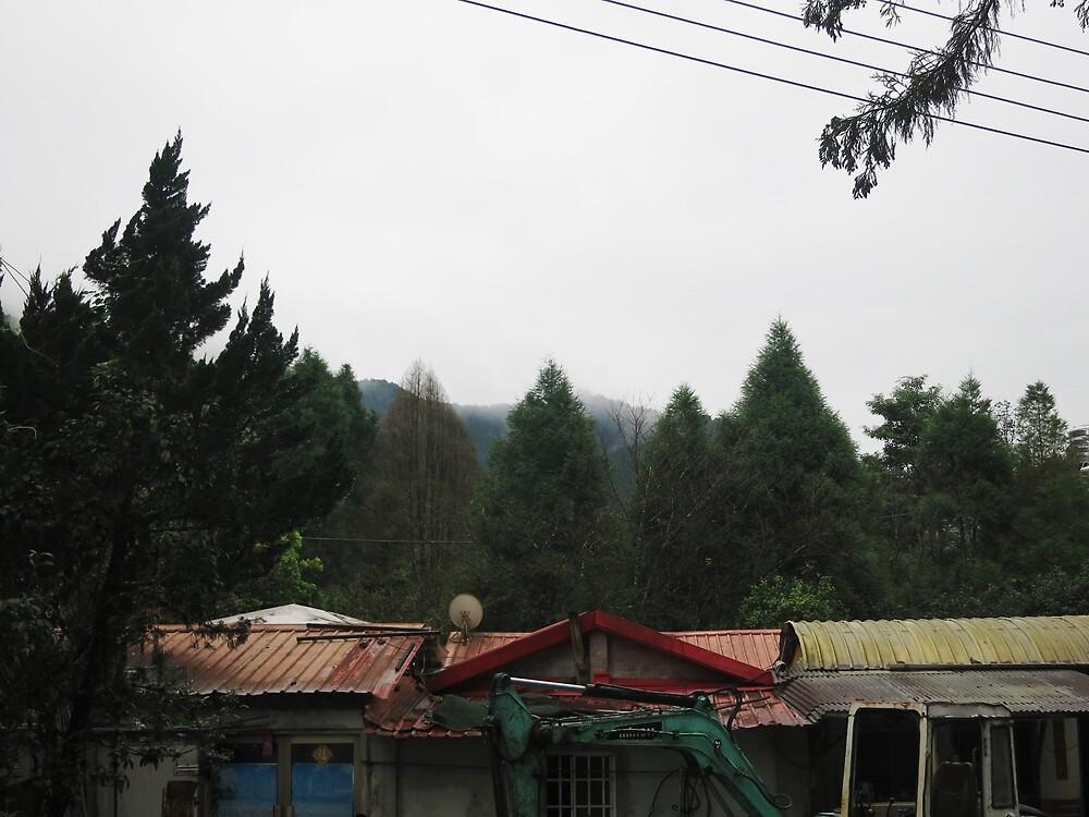 Nature - trees and mountain scenery by nnatasha