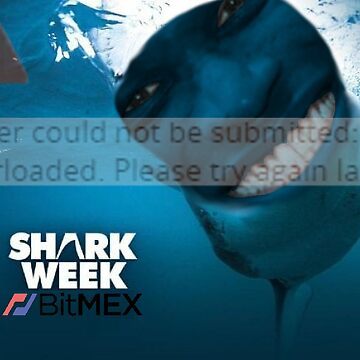 Bitmex - Shark Week by big-dingus