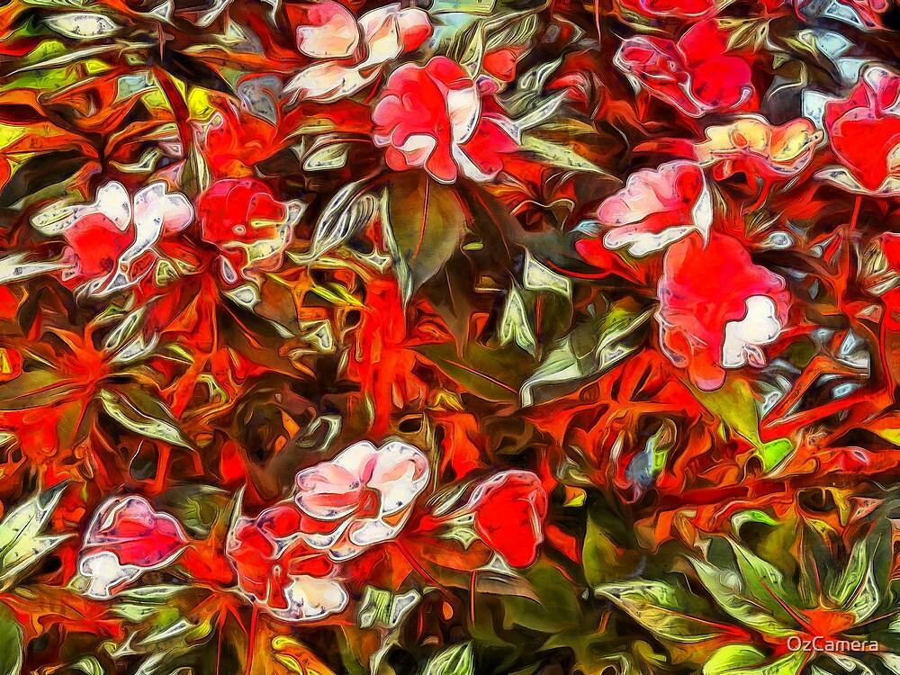 rainforest flowers by OzCamera