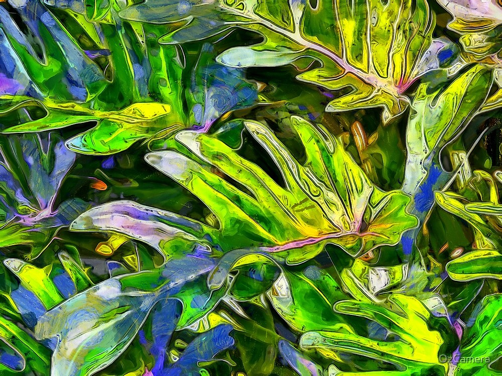 jungle leafs by OzCamera