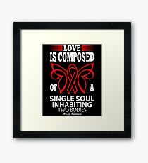 Love is Composed of a single soul inhabiting two Bodies. AIDS Awareness Quote  Framed Print