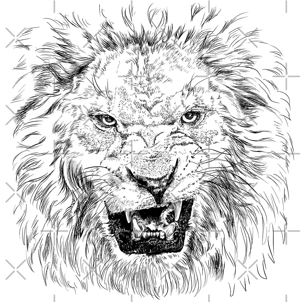 lion by Sibo Miller