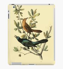 James Audubon Vector Rebuild - The Birds of America - From Drawings Made in the United States and Their Territories V 1-7 1840 - Boat Tailed Grackle iPad Case/Skin