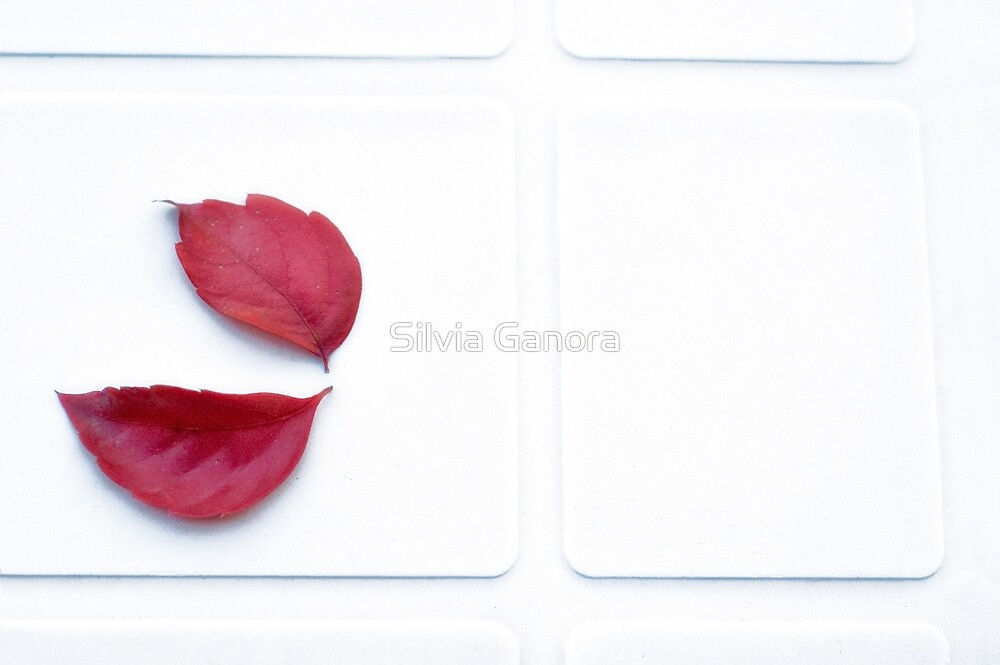 Red leaves on white by Silvia Ganora