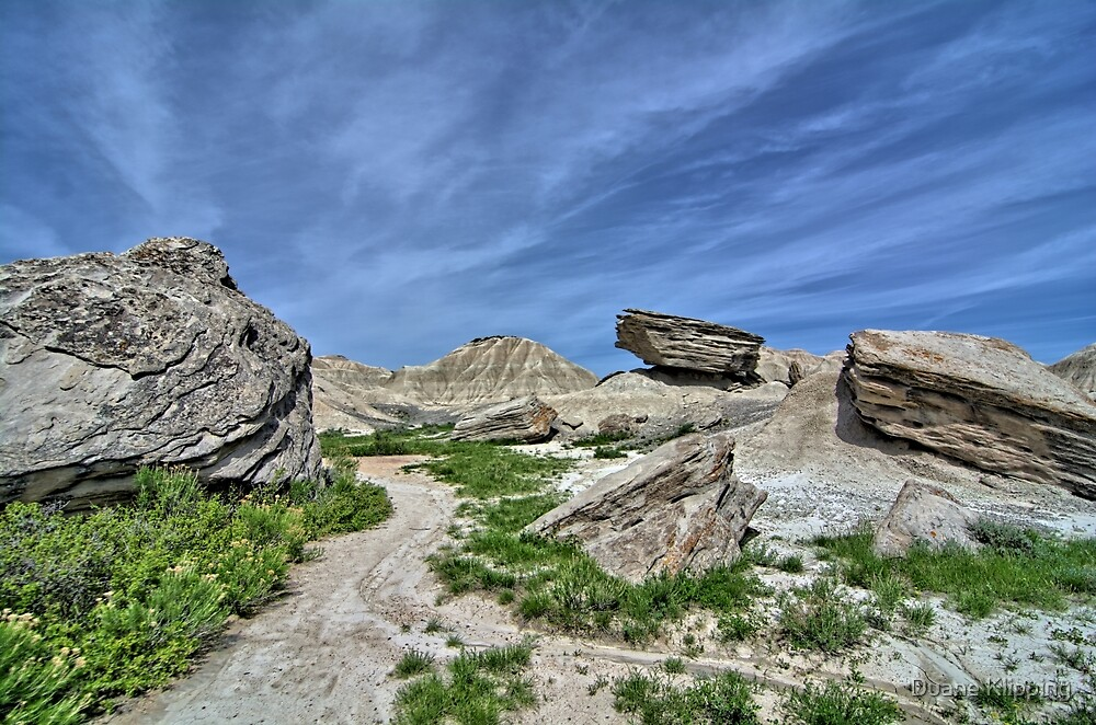 Toadstool Geological Park 5 by Duane Klipping