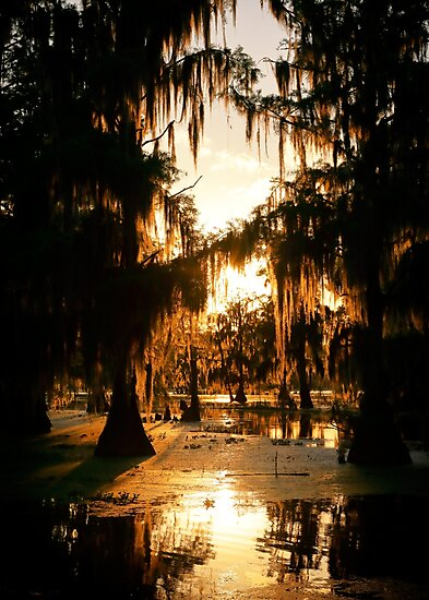 Bayou Fire by Nicholas Blackwell