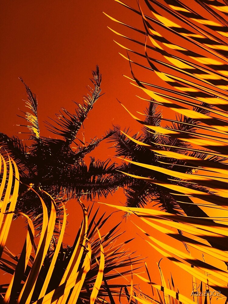 Tiger Palm  by Adzi2002