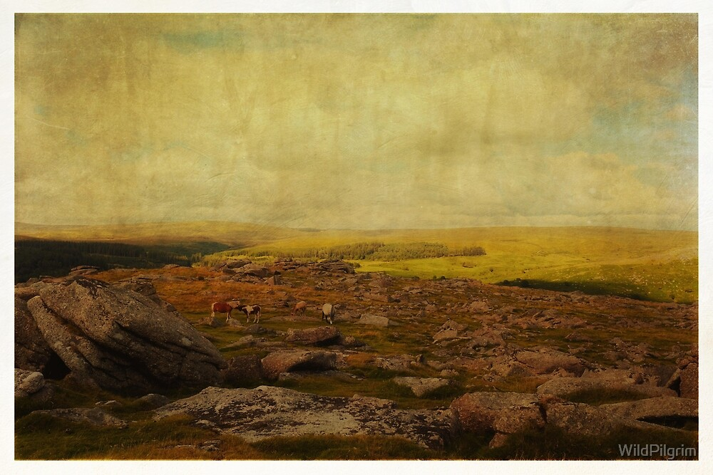 Dartmoor, now and forever by WildPilgrim