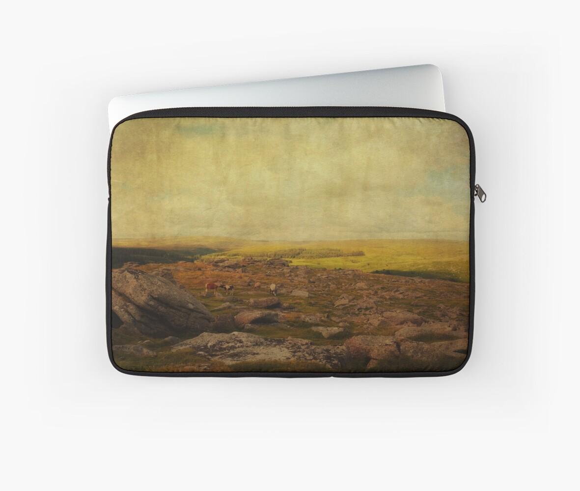 Dartmoor, now and forever by WildPilgrim