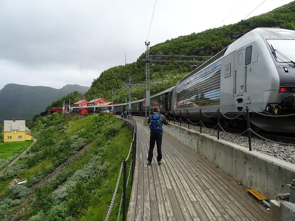 Myrdal Railroad Station by Erik Jansen