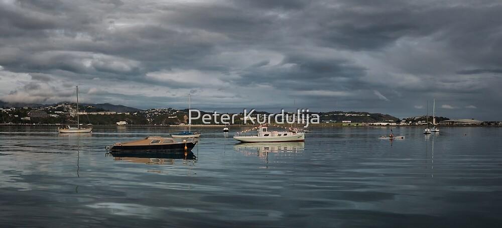 Tonight's Walk – Evans Bay Marina by Peter Kurdulija