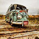 St Ouen beach bug 2 by Gary Power