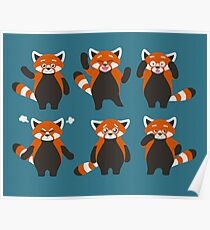 Ausdrücke des roten Pandas Poster