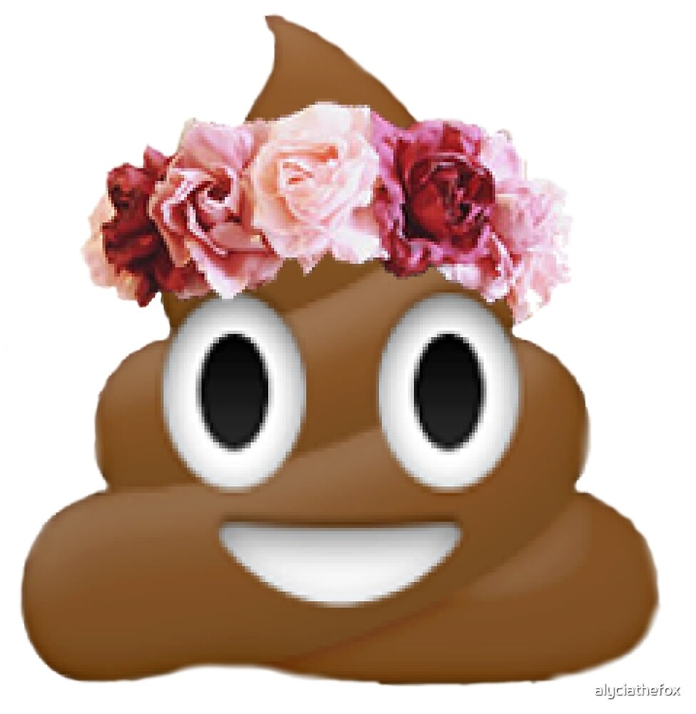 Flower Crown Poop Emoji Hipster Tumblr By Alyciathefox Redbubble