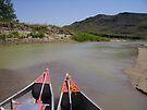 Cheyenne River in Summer by Dawne Olson